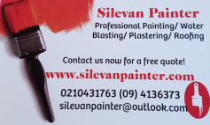 Silevan Painter logo