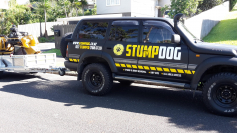 Stumpdog Limited logo