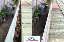 Gutter clean - Titirangi
