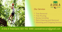 A One A Tree Care - Qualified Arborists Auckland - If you have down trees on your property, call A One A Tree Care for help. Stay safe out there and leave the heavy work to the professionals.