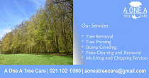 A One A Tree Care - Qualified Arborists Auckland - A One A Tree Care - Qualified Arborists Auckland