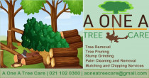 A One A Tree Care - Qualified Arborists Auckland - Level 4 Certified Arborist, Auckland