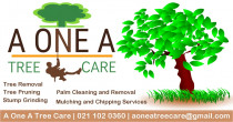 A One A Tree Care - Qualified Arborists Auckland - We also offer the following professional tree care services at affordable prices throughout the Auckland area, including tree assessment, tree pest and disease control, canopy reduction or restoration, arborist reports, hedge trimming, site clearing and consulting. We are a one-stop shop for all your tree troubles.