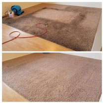 carpet cleaning auckland steam n dry carpets flood - carpet cleaning auckland steam & dry carpets flood.