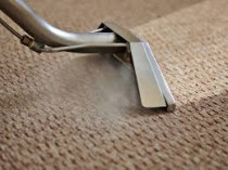 Auckland Carpet Steam & Dry Cleaning - Auckland Steam n Dry carpet cleaners provide superior truck mount carpet cleaning service in North Shore, Manukau City, East, South, West Auckland, and Hib Coast since 1987