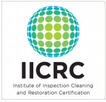 "Auckland carpet cleaner IICRC - For the largest professional carpet cleaning service company since 1987, call Auckland Steam n Dry carpet cleaners to ICRC standards. Graeme Stephens 2001 IICRC certified ""master restoration technician.  Call now on 0800 783266"