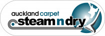 Carpet Cleaning Auckland Carpet Steam n Dry - For the largest professional carpet cleaning service Auckland company since 1987, call Auckland Steam n Dry carpet cleaners to provide superior truck mount clean service in North Shore, Manukau City, East, South, West Auckland, & Hib Coast. Call now on 0800 783266