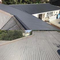 Billy Boy in Action, Roof painting in Greenhithe, Auckland - It's just amazing what you can do just with a little bit of paint - the owner was so pleased I was able to help them avoid the bill of a new roof.