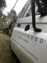Brotherwood, Tree services, West Auckland