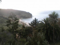 Ahipara Fire Reinstatement - Shipwreck Bay -looking down from the job