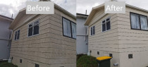 House Wash - Cleanse Right House Wash in Papatoetoe