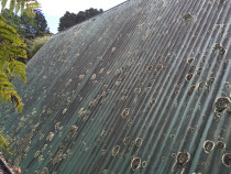Corrugated  roof wash before cleaning