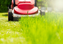 Lawn mowing - Professional high quality lawn mowing