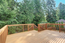 Albany - New Deck