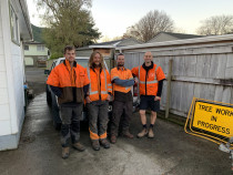 The Tree Surgeon Team from Leaves And Trees Ltd