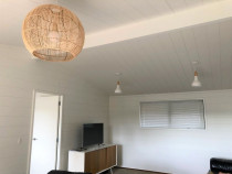 Mt Albert - Lockwood Interior completed by Profile Painters and Decorators