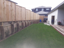 Lawn / Fence by Pronto Building and Landscaping Ltd - Ready Lawn / Pine Fence