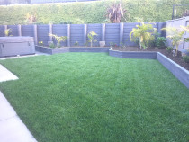 Instant lawn turf with raised offset gardens for character