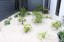 Plant garden with weed mat and white stone ground cover