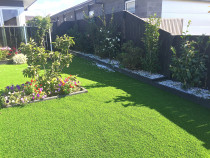 Artificial lawn, raised garden and camellia hedge