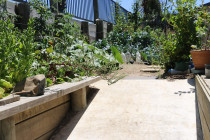 Concrete footpath to raised veggie garden