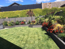 Instant lawn and raised gardens