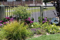 Aluminium security fence using machine rounded posts with garden become established now.