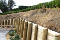 Retaining walls using tongue and groove timber