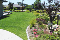 Concrete garden edging mowing strip, instant lawn and garden planting