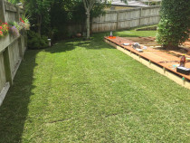 Instant lawn turf with low deck