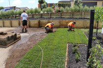 Team at work laying instant lawn against retaining walls with timber garden border