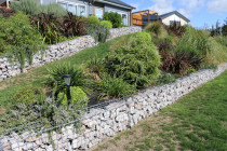 Gabion Rock wall and paths with gardens planted one year later