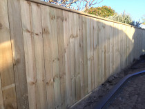 Paling fence using 150 x 25 rough sawn timber with cap board.