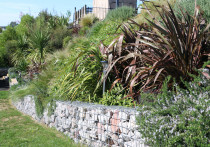 Gabion Rock wall and paths with gardens planted on bank one year later