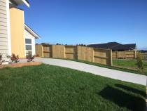 Instant lawn turf with good neighbour paling fencing and raised gardens