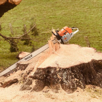Large saw and stump