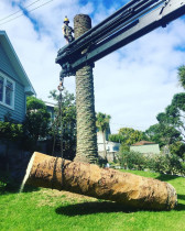 Crane tree removal by Treemendous Tree Service - When we need assistance from a crane to move large log