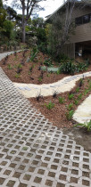 Reinstating garden area and adding a new path way