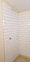 Mt Eden Bathroom Renovation by Aries Builders
