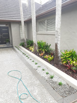 Soft landscaping - Law Landscapes LTD completed this soft landscaping project. Both areas was over grown and messy. We simplified the area and planted some ground cover gardenias, giant mondos , taller gardenias and reused some bromeloids