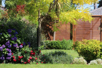 Slat Trellis boundary fence with garden layout
