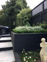 Virtuoso's Italian Courtyard, Kingsland, Auckland - Virtuoso designed and built this beautiful Italian inspired courtyard garden in the heart of Aucklands busy Kingsland district. An tranquil, quiet oasis in the middle of the bustling city. The beautiful paving is off set with beautiful bespoke wrought iron fences and gates. The box hedging and topary bushes give a formal look to the garden yet meet the clients brief of being easy care and low maintenance. We also redesigned the front of this property with a new driveway, carport and retaining walls.