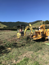 The digger making short work of the Mulching job in Whitemans Valley, Upper Hutt  - Leaves And Trees Ltd