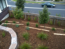 Bark Garden After A1 Sure Services