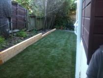 New Lawn After A1 Sure Services