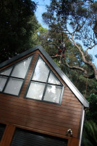 Roof encroachment... sorted by ArborTechniX - Target prune reduction, roof apex..structural encroachment solutions...