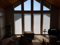 Vision Blinds by Blinds Online Ltd - Wellington