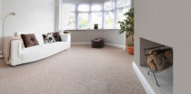 Professional Carpet Clean - We not only clean your carpets but sanitise them too.