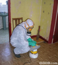 Safety First - We work to provide safe Pest Control Services for you and your family