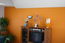 painted feature walls